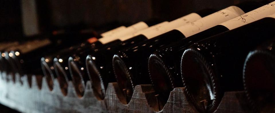 Roteiros all-inclusive para fugir dos tradicionais tours em vinícolas chilenas